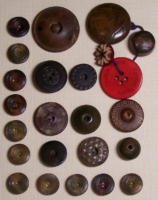 vintage tagua nut buttons