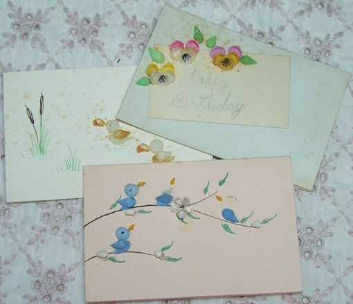 vintage greeting cards with small shells