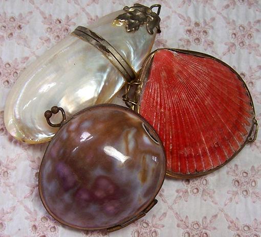 shell purses
